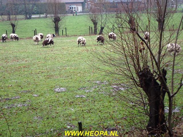2017-03-08     Grebbelinie-tocht  Renswoude  25 km  (139)