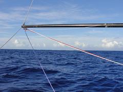 do, 23/09/2010 - 21:02 - 32_ Menigeen liep schipbreuk op Beveridge Reef_ daar in de verte