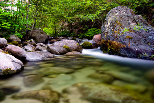 longexposure nature water creek forest river landscape nikon scenery rocks peaceful wideangle d200 wilderness whiskeytown brandycreek