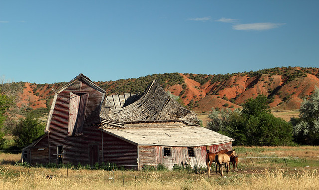 Dilapidated Barn and Horses - Ten Sleep, Wyoming