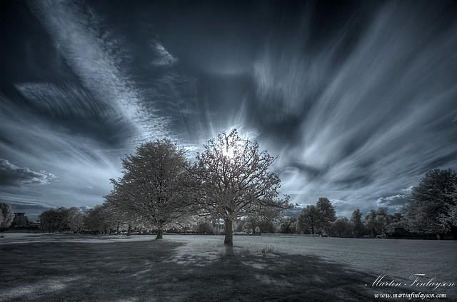 Farnham Park Rays