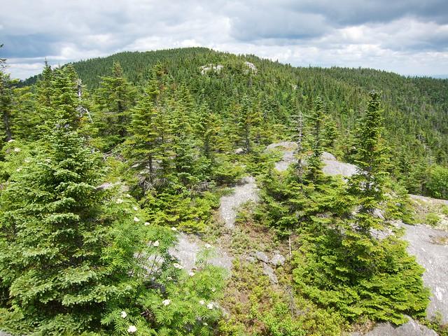 2:16:20 (64%): vermont hiking greenmountains mthunger waterburytrail mtwhiterock