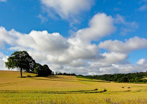 day cloudy rotherham southyorkshire flickrdiamond platinumheartaward doublyniceshot flickrstruereflection1 flickrstruereflection2 flickrstruereflection3 flickrstruereflection4