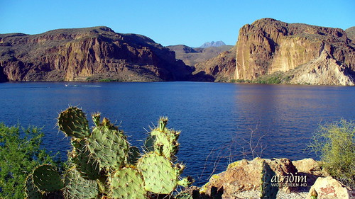 arizona photo flickr desert widescreen 169 canyonlake fourpeaks captainrick 16x9widescreen virtualjourney atridim pricklypaircactus virtualjourney2