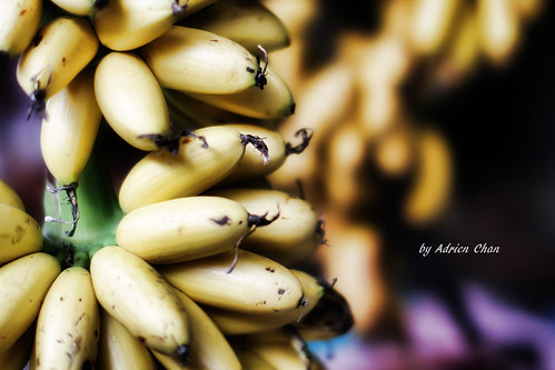 Bananas | by Adrien Chan