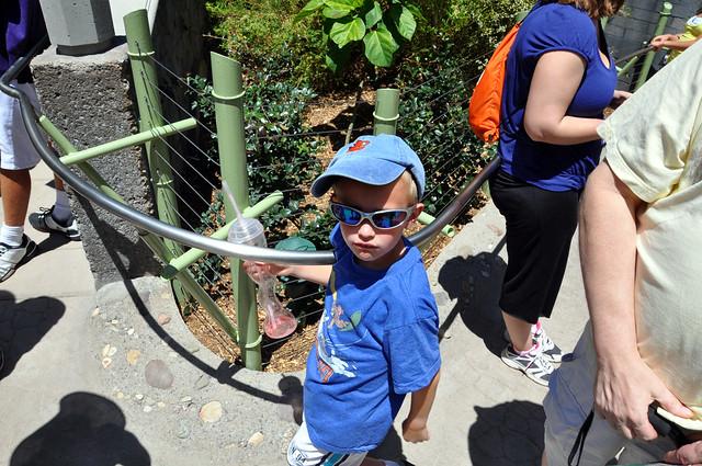 2011-08-06 - San Diego Zoo 249