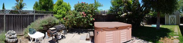 Backyard 1000013