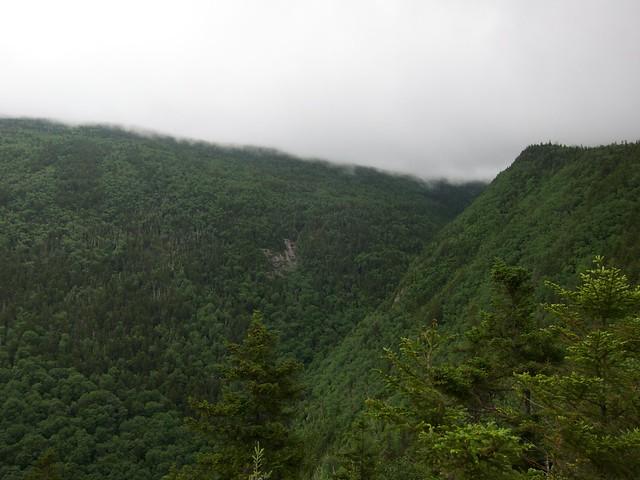 0:36:48 (28%): hiking newhampshire whitemountains mtmoosilauke bentontrail