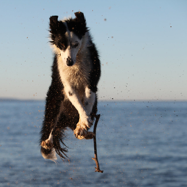 Intercepting the stick