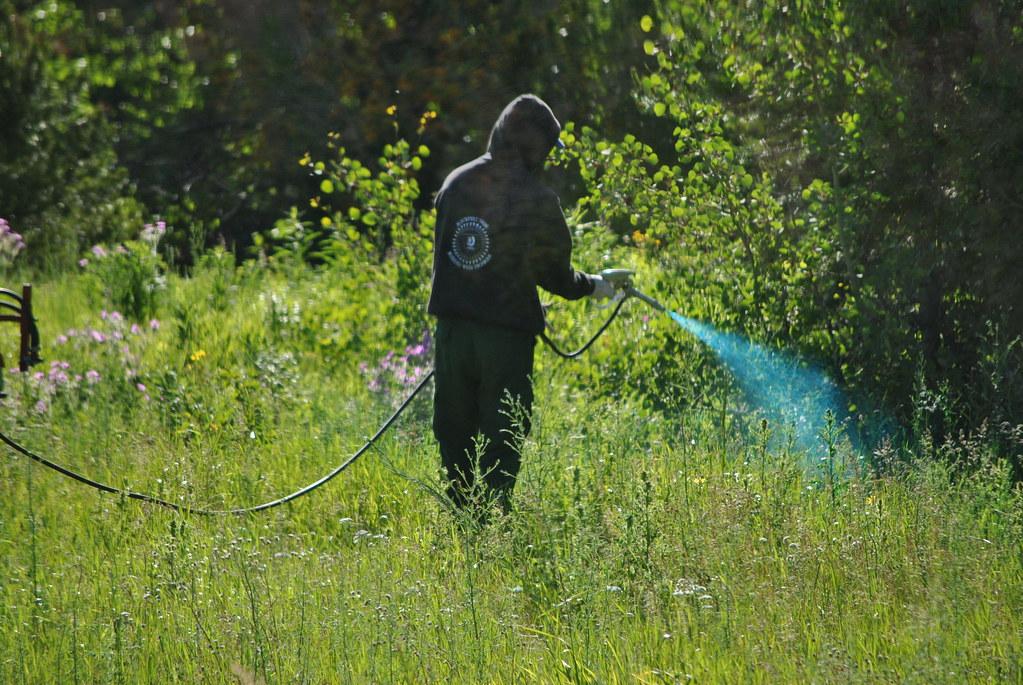 weed control spraying