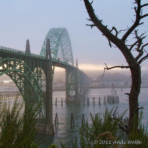 Newport Bridge over Yaquina Bay | by andiwolfe