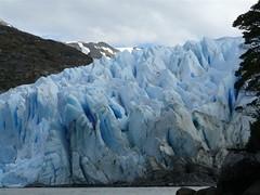di, 25/11/2008 - 22:48 - 62_ Dinghytocht naar de gletsjer die uitkomt in Estero Fougue