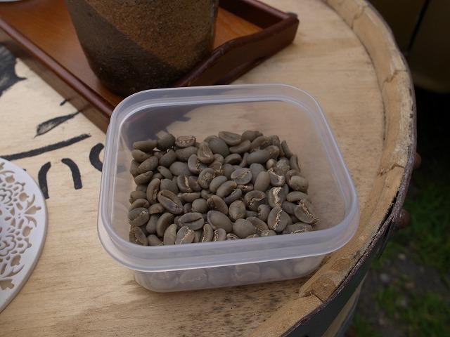 <p>e)焙煎前のコーヒー豆</p>