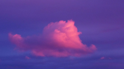 On a pink cloud .. | by Mark van Laere