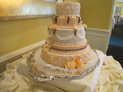 29728 Julia and David's Wedding Cake   by bsabarnowl