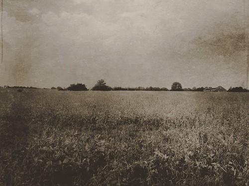 monochrome landscape minimalism iphone iphoneography iphone5s mextures