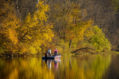Website:Fishing