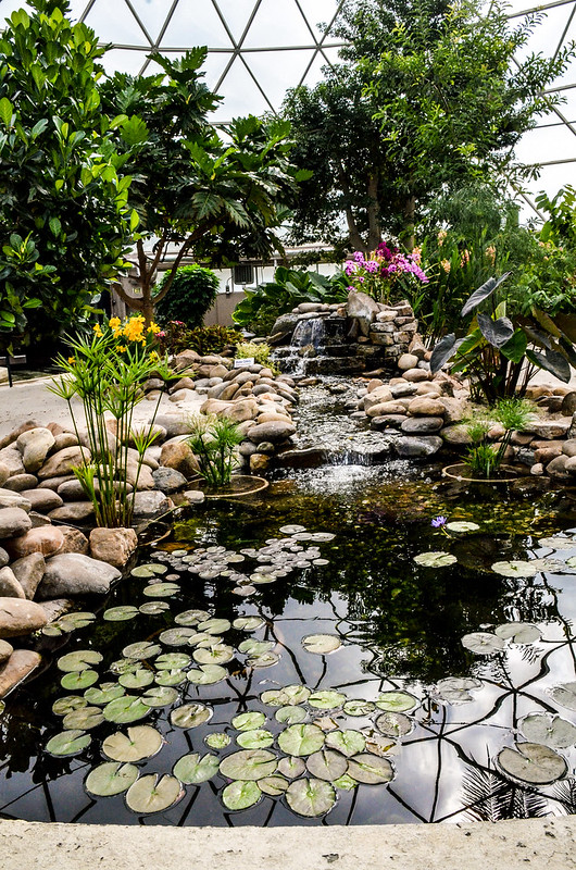 Living With the Land stream