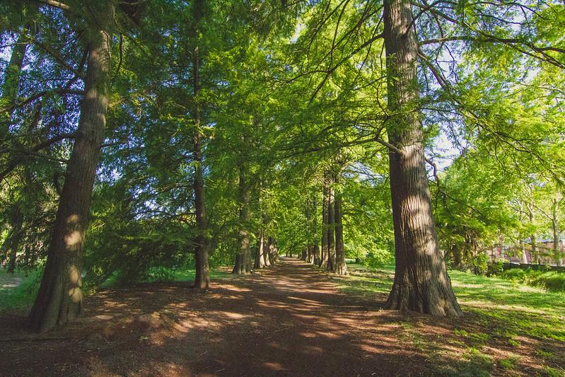 Jardín Botánico Prado - Montevideo