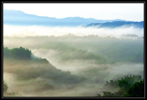 morning travel fog sunrise taiwan tainan 台灣 台南 日出 霧 中華民國 晨 二寮 erliao nikond90 nikkor70200mm repofchina maymargy