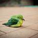 Lonely Bird by JavaManCAM