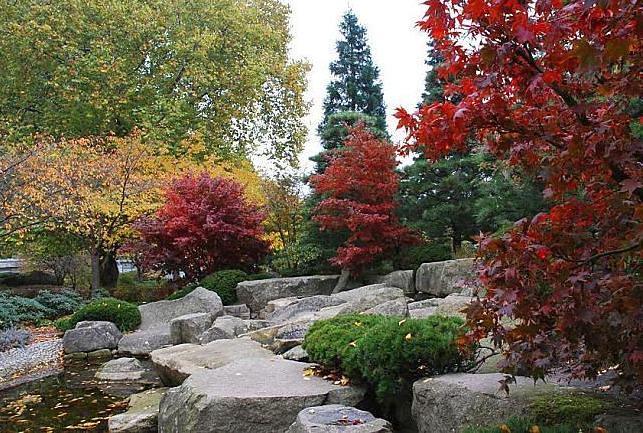 038153 Japanischer Garten In Hamburg Planten Un Blomen D Flickr