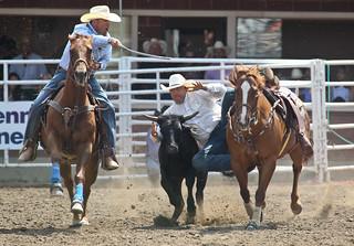 Steer Wrestling Photo Credit Mike Ridewood Calgary