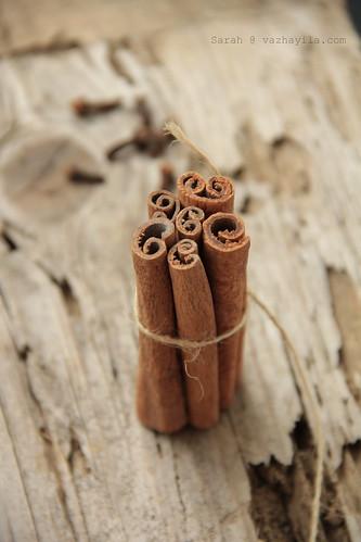 Cinnamon | by Sarah@Vazhayila.com