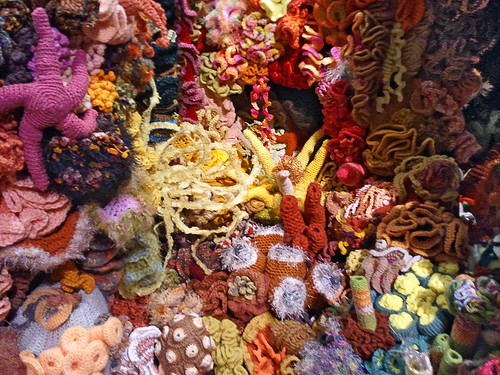 Hyperbolic crochet coral reef detail | by Remember To Breathe