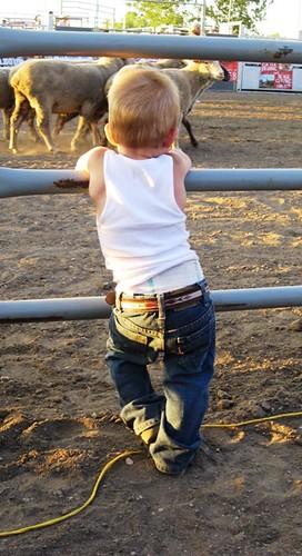 Future cowboy?