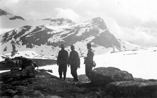 Bergjegere på fjellet i næheten av Grunnfjordbotn