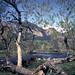 South Boulder Creek 2