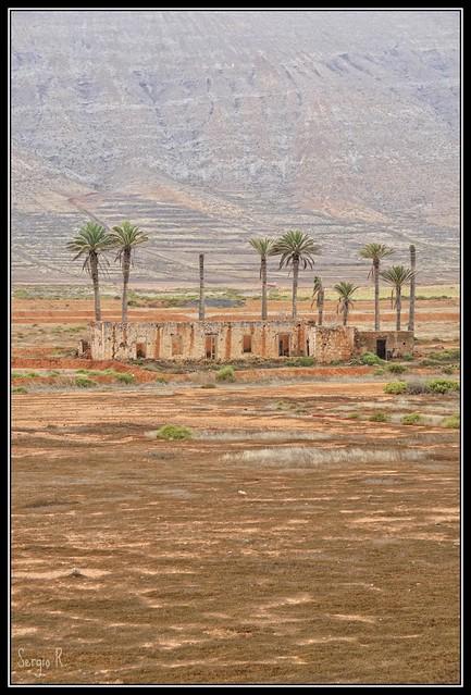 Oasis de ruinas