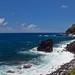 Maui_21 copy