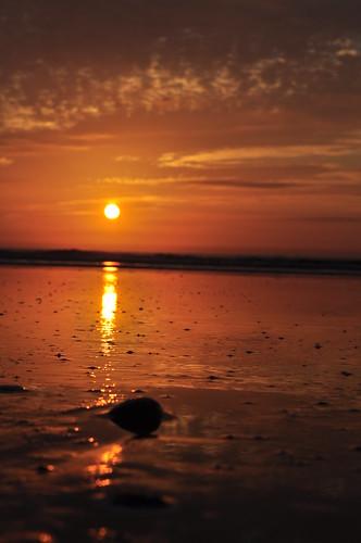 ocean morning sea orange sun sunlight nature water beautiful clouds sunrise dawn golden early waves atlantic glowing jacksonvilleflorida pontevedrabeach nikkor1855mmvr nikond5000