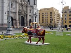di, 01/12/2009 - 19:35 - 80_ koe voor Kathedraal op Plaza Mayor-1