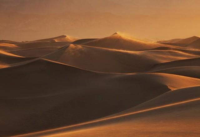 Dune Wonderland pt. 2