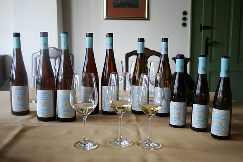 Robert Weil, Rheingau Germany | by Megan Lawrie Cole