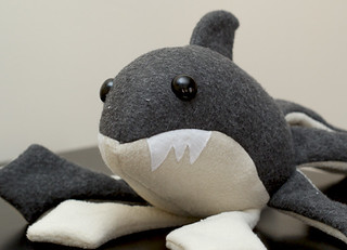 sharktoplush medium - cute face | by Suzannah Ashley