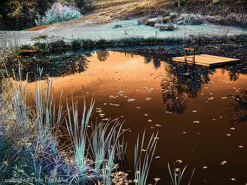 autumn nature landscape vermont fallfoliage infrared ponds skyreflection pondreflections topazclean dragondaggerphoto dragondaggeraward galleryoffantasticshots flickrstruereflection1 flickrstruereflection2