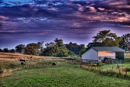 sunset barn landscape michael illinois cattle hdr rushville stambaugh