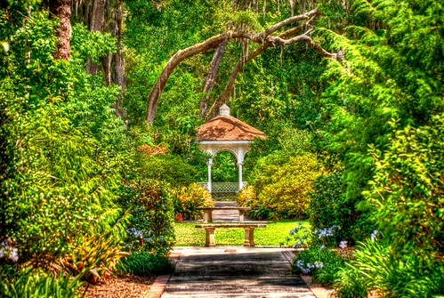 Leu Gardens | by R9 Studios FL (Thanks to all the fans!!!)