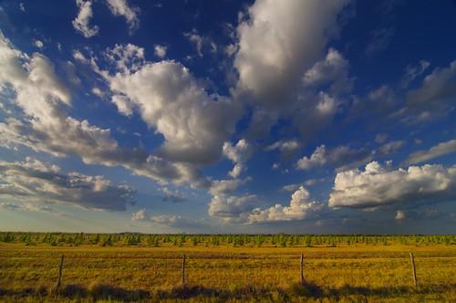 clouds texas prairie flatland christmastreefarm katytexas harriscounty katyprairie harriscountytexas househahlrd