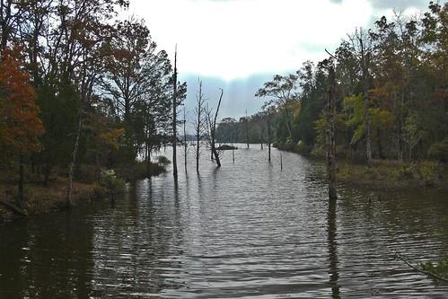 day clear drought highwater beaverden purtiscreekstatepark eustacetexas