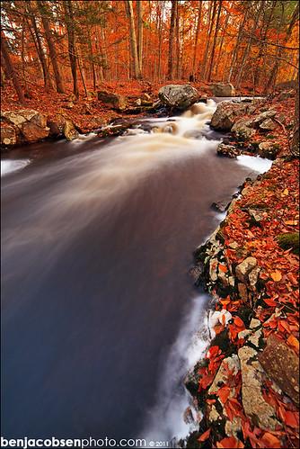 ri fall leaves river waterfall 14mm 5dii nooseneckhollow