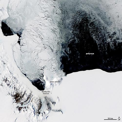 Polynya off the Antarctic Coast | by NASA Earth Observatory