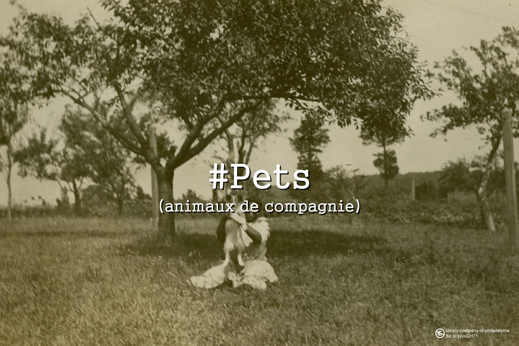 Throwback Thursday : Animaux de compagnie #pets