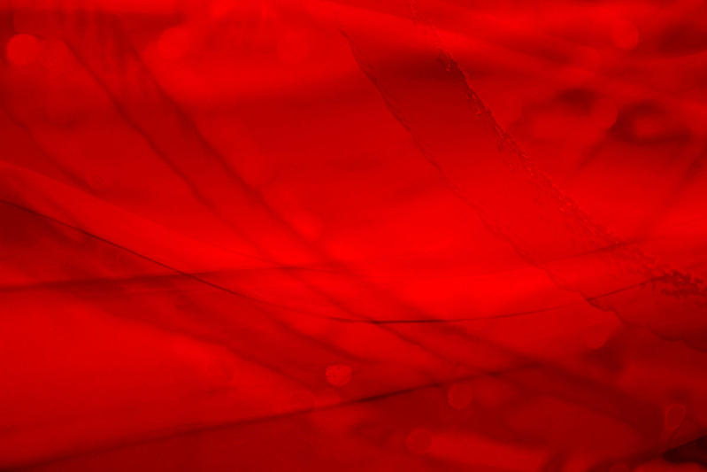 Abstract of the red slide...