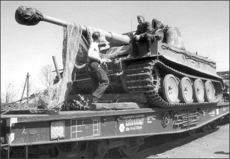 Tiger I of SpzAbt 503