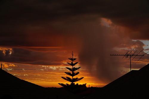 westernaustralia australia australien sky fire skyfire sunrise selfmaedphotography